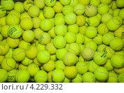 Купить «Мячи для большого тенниса», эксклюзивное фото № 4229332, снято 25 сентября 2011 г. (c) Алёшина Оксана / Фотобанк Лори