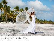 Невеста с развевающейся фатой на тропическом пляже. Стоковое фото, фотограф Елена Ефимова / Фотобанк Лори