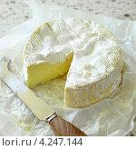 Купить «Круглый французский сыр камамбер», фото № 4247144, снято 22 июля 2019 г. (c) Food And Drink Photos / Фотобанк Лори