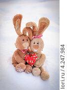 Купить «Влюбленные зайцы», фото № 4247984, снято 20 января 2013 г. (c) Anna Romashova / Фотобанк Лори