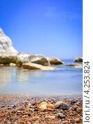 Ракушки на диком пляже Сицилии (2012 год). Стоковое фото, фотограф Anna Romashova / Фотобанк Лори