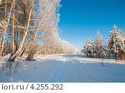 Купить «Зимний пейзаж. Дорога проходящая через смешанный лес покрытый инеем», эксклюзивное фото № 4255292, снято 26 января 2013 г. (c) Игорь Низов / Фотобанк Лори