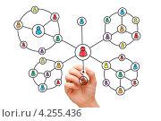 Купить «Рука рисует схему социальных сетей», фото № 4255436, снято 24 мая 2019 г. (c) Ивелин Радков / Фотобанк Лори