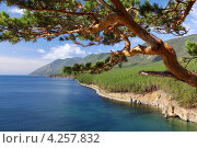 Купить «Байкал», фото № 4257832, снято 12 августа 2011 г. (c) Сергей Белов / Фотобанк Лори