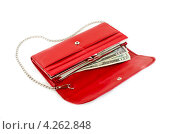 Купить «Красный кожаный кошелек с долларами», фото № 4262848, снято 25 января 2013 г. (c) Елена Силкова / Фотобанк Лори