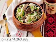 Купить «Салат из квашеной капусты с картофелем и грибами», фото № 4263988, снято 6 февраля 2013 г. (c) Татьяна Ворона / Фотобанк Лори