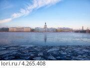 Вид на Неву и Кунсткамеру зимой. Санкт-Петербург. (2012 год). Редакционное фото, фотограф Кравченко Юлия / Фотобанк Лори