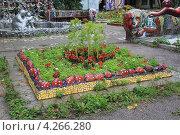 Купить «Мозаичный дворик», фото № 4266280, снято 4 сентября 2010 г. (c) Левина Татьяна / Фотобанк Лори