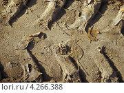 След от колеса на песке. Стоковое фото, фотограф Ковалева Наталья / Фотобанк Лори