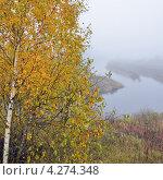 Купить «Осенний туманный пейзаж», эксклюзивное фото № 4274348, снято 14 октября 2012 г. (c) Александр Алексеев / Фотобанк Лори