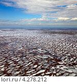 Купить «Вид сверху на болото весной», фото № 4278212, снято 19 апреля 2012 г. (c) Владимир Мельников / Фотобанк Лори