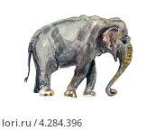 Слон. Акварельный рисунок. Стоковая иллюстрация, иллюстратор Ковалева Наталья / Фотобанк Лори