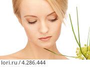 Купить «Очаровательная девушка с нежным лицом и зеленым растением», фото № 4286444, снято 12 февраля 2011 г. (c) Syda Productions / Фотобанк Лори