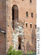 Разрушающаяся стена Пятницких ворот Коломенского кремля (2010 год). Редакционное фото, фотограф Dmitriy Semyonov / Фотобанк Лори