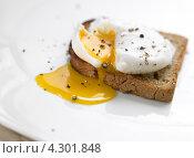 Купить «Яйцо-пашот на тосте», фото № 4301848, снято 11 апреля 2008 г. (c) Food And Drink Photos / Фотобанк Лори