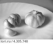 Чёрно-белый натюрморт с чесноком. Стоковое фото, фотограф Елена Алексеева / Фотобанк Лори