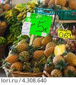 Fresh pineapples on market tray. Azores pineapples. (2012 год). Стоковое фото, фотограф Роман Сулла / Фотобанк Лори