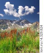 Высокогорная долина в солнечный день. Стоковое фото, фотограф Евгений Валерьевич / Фотобанк Лори