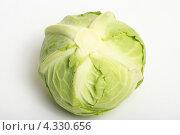 Купить «Кочан капусты», эксклюзивное фото № 4330656, снято 25 февраля 2013 г. (c) Яна Королёва / Фотобанк Лори