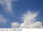 Купить «Необычные облака», фото № 4346524, снято 28 июля 2007 г. (c) Антонина Ращинская / Фотобанк Лори