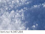 Купить «Снег макро», фото № 4347264, снято 23 февраля 2013 г. (c) Павел Москаленко / Фотобанк Лори