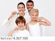 Купить «Семейная пара с двумя детьми вместе чистят зубы», фото № 4367180, снято 10 октября 2009 г. (c) Wavebreak Media / Фотобанк Лори