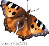 Бабочка. Стоковая иллюстрация, иллюстратор Александра Шкиндерова / Фотобанк Лори