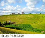 Сельский летний пейзаж. Стоковое фото, фотограф kraser / Фотобанк Лори