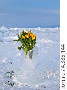Байкал. Красивое праздничное поздравление - букет и надпись на льдине 8 Марта. Стоковое фото, фотограф Виктория Катьянова / Фотобанк Лори
