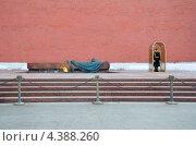 Купить «Москва. Почетный караул у Могилы Неизвестного солдата», эксклюзивное фото № 4388260, снято 9 марта 2013 г. (c) Елена Коромыслова / Фотобанк Лори