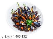 Мидии в белой тарелке. Стоковое фото, фотограф Vas Pakulov / Фотобанк Лори