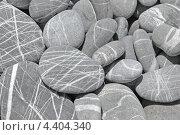 Серые полосатые камни, галька. Стоковое фото, фотограф Tatyana Krasikova / Фотобанк Лори