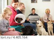 Купить «Люди в очереди к ветеринару», фото № 4405164, снято 9 мая 2012 г. (c) Monkey Business Images / Фотобанк Лори