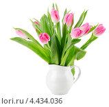 Розовые тюльпаны в кувшине на белом фоне. Стоковое фото, фотограф Tatjana Baibakova / Фотобанк Лори