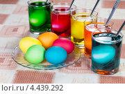 Купить «Окраска разноцветных яиц на праздник Пасхи», фото № 4439292, снято 24 марта 2013 г. (c) Сергей Лаврентьев / Фотобанк Лори