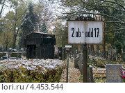 Ольшанское кладбище в Праге осенью. Чехия (2012 год). Редакционное фото, фотограф Яна Шпакова / Фотобанк Лори