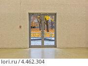 Купить «Осенний пейзаж за стеклянной дверью», фото № 4462304, снято 24 октября 2012 г. (c) Владимир Сергеев / Фотобанк Лори