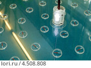 Физический эксперимент с компасами и электромагнитом. Стоковое фото, фотограф Ковалев Василий / Фотобанк Лори