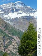 Купить «Альпийские горы летом, Швейцария», фото № 4509232, снято 7 июня 2012 г. (c) Юрий Брыкайло / Фотобанк Лори