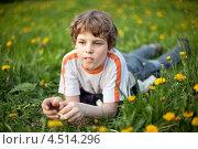 Купить «Мальчик лежит на весеннем лугу с одуванчиками», фото № 4514296, снято 21 мая 2011 г. (c) Losevsky Pavel / Фотобанк Лори