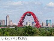 Живописный мост, Москва (2011 год). Редакционное фото, фотограф Losevsky Pavel / Фотобанк Лори