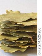 Купить «Сушеные лавровые листья», фото № 4525956, снято 13 мая 2012 г. (c) Food And Drink Photos / Фотобанк Лори