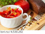 Купить «Венгерское овощное рагу лечо», фото № 4530292, снято 15 апреля 2013 г. (c) Андрей Радченко / Фотобанк Лори