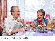 Купить «Пожилые люди за столом», фото № 4539840, снято 14 апреля 2013 г. (c) Мастепанов Павел / Фотобанк Лори