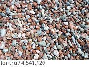 Купить «Морская крупная галька, снятая сверху», эксклюзивное фото № 4541120, снято 11 апреля 2013 г. (c) Геннадий Соловьев / Фотобанк Лори