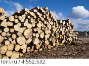 Купить «Сосновые бревна», эксклюзивное фото № 4552532, снято 21 апреля 2013 г. (c) Елена Коромыслова / Фотобанк Лори