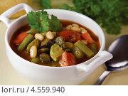 Купить «Запечённый постный суп», эксклюзивное фото № 4559940, снято 24 апреля 2013 г. (c) Александр Курлович / Фотобанк Лори