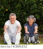 Купить «Пожилая пара занимается гимнастикой на зеленой траве в парке», фото № 4564612, снято 4 ноября 2010 г. (c) Wavebreak Media / Фотобанк Лори