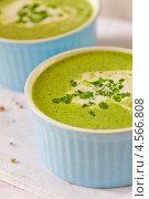 Купить «Суп из шпината со сливками», фото № 4566808, снято 21 апреля 2013 г. (c) Eve Voevoda / Фотобанк Лори