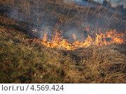 Весенний огонь на берегу реки. Стоковое фото, фотограф Мария Семечкова / Фотобанк Лори